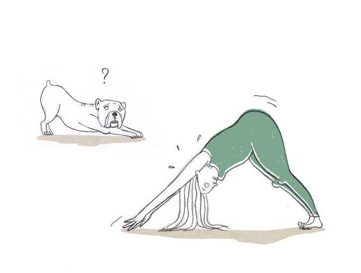 downwardfacingdog