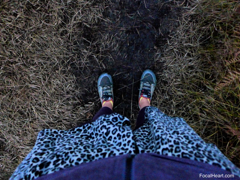 Feet Nov 2015