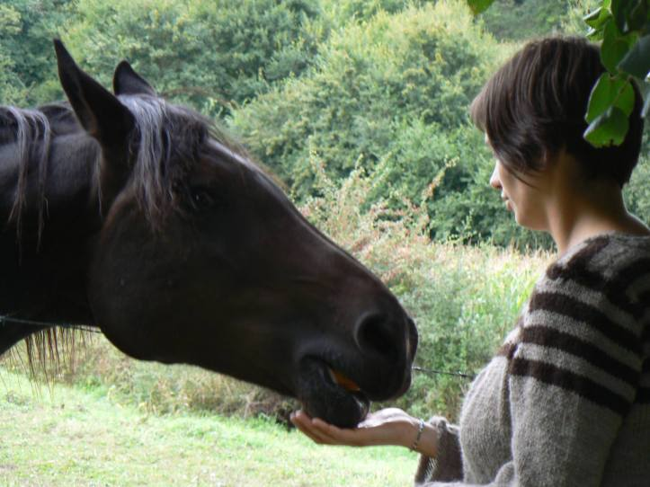 Horse and me