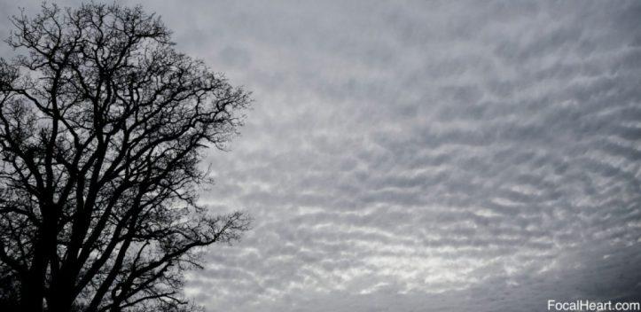 cropped-clouds.jpg