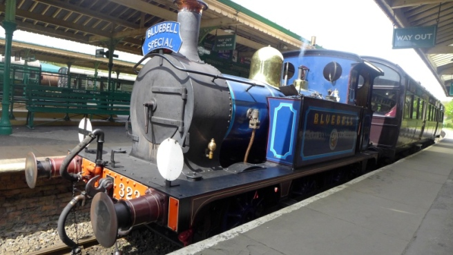 Bluebell special 2