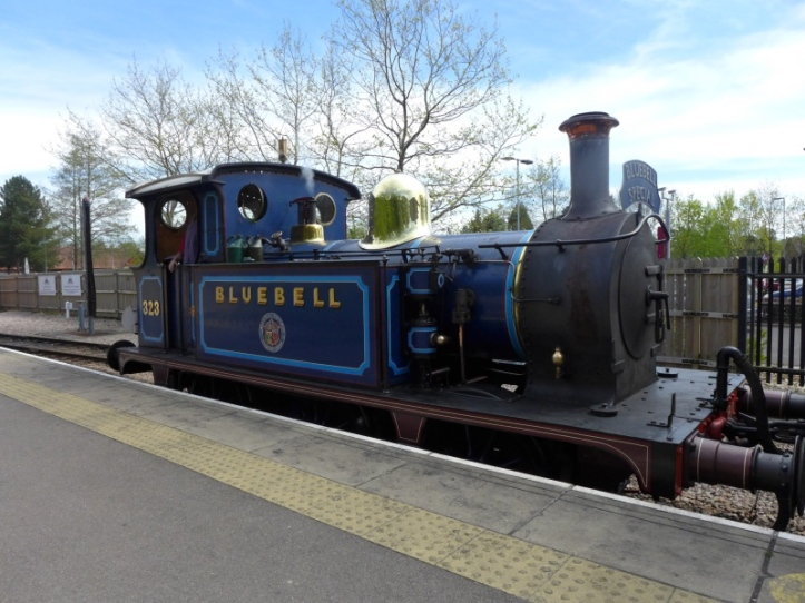 Bluebell Special