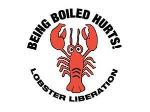 Lobster Liberation
