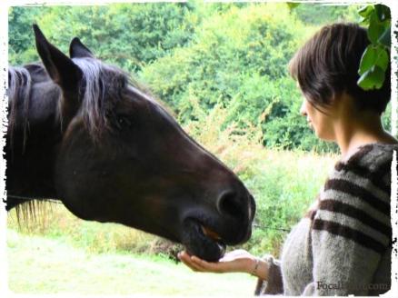 Horse+me
