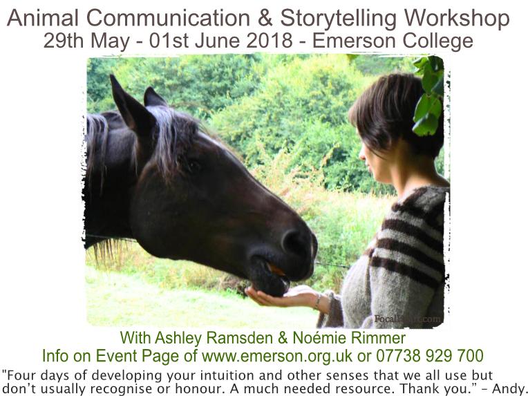 Ac workshop leaflet