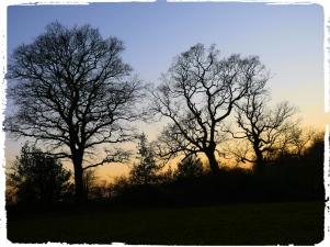 SunsetMarch2019