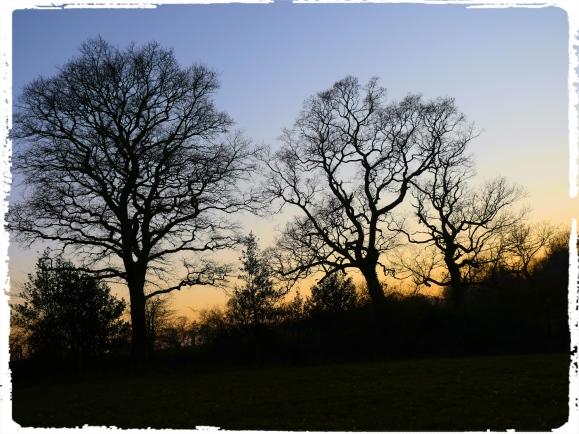 SunsetMarch2019.jpg